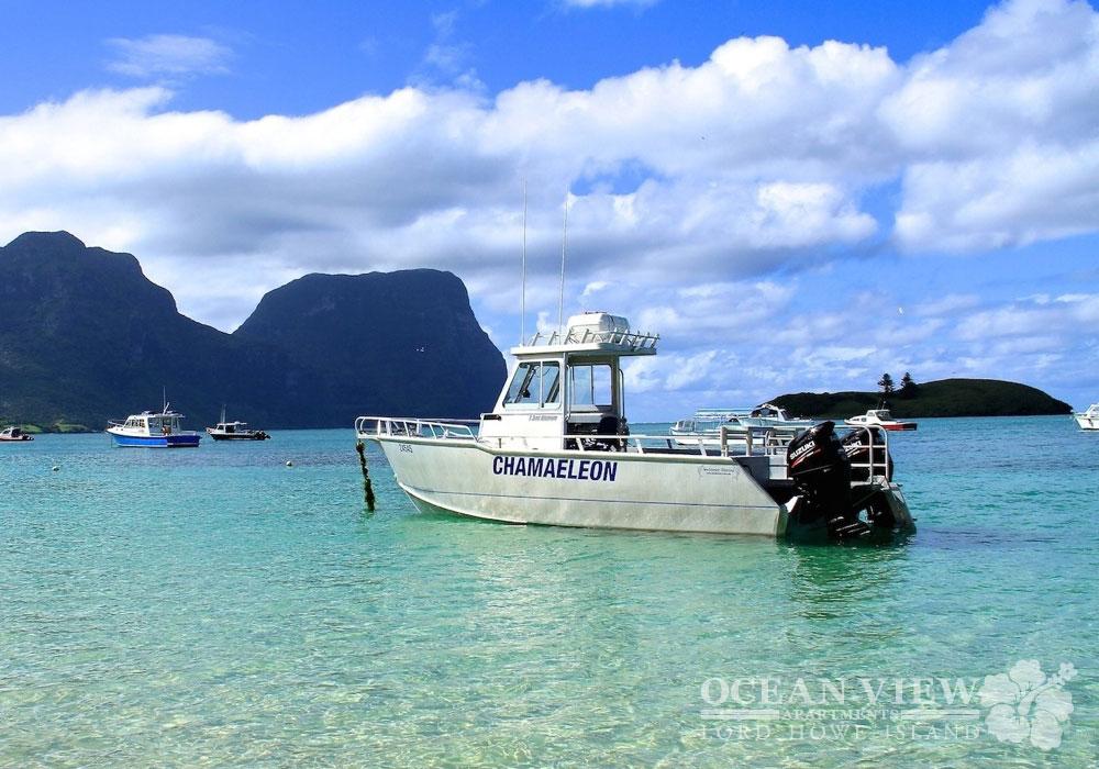MV_Chameleon_Lord_Howe_Island