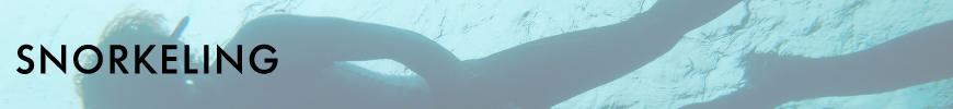 ocean_view_apartments_lord_howe_island_facilities_snorkeling