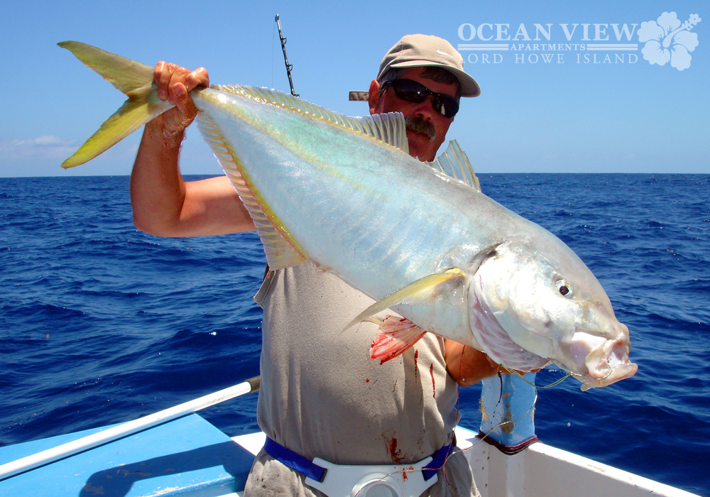 ocean_view_apartments_lord_howe_island_fishing_15