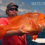 ocean_view_apartments_lord_howe_island_fishing_3